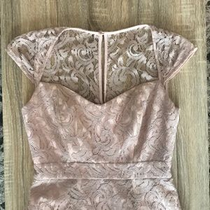 Blush Jcrew Lace Dress with Lining and Boning Sz 2